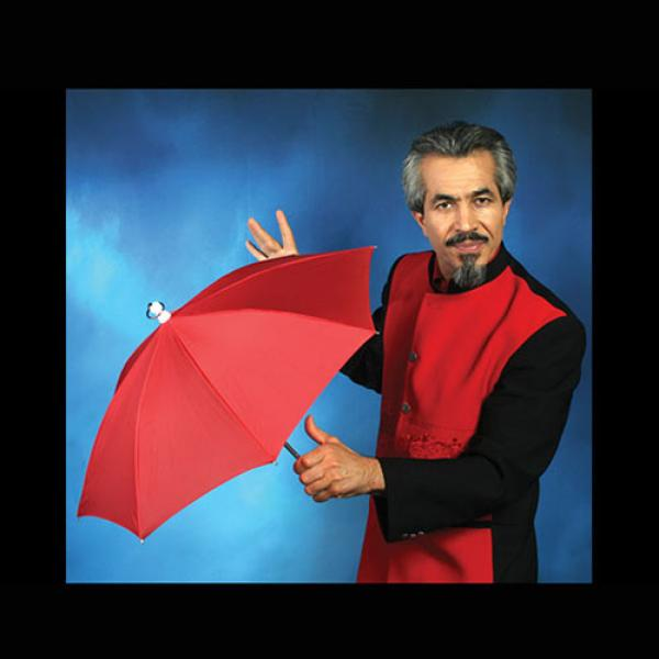 Automatic Silk To Umbrella