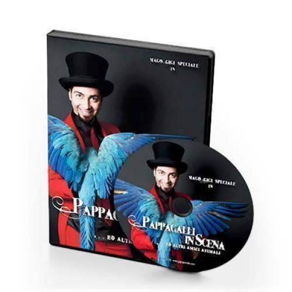 Gigi Special - Parrots on Stage (DVD)