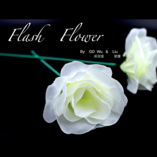 White Flash Flower (2pk.) - by GD Wu & GT magi...