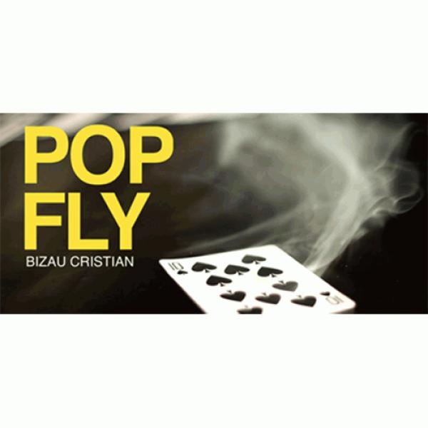 Pop Fly by Bizau Cristian video DOWNLOAD